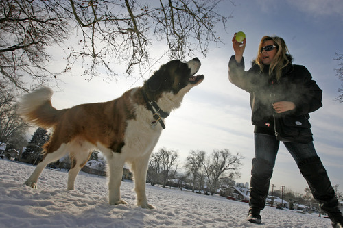 Rick Egan  | The Salt Lake Tribune Magda Allbright plays with her dog Bubba, at Lindsey Gardens dog park in the Avenues. The Greater Avenue Community Council is considering a petition that would expand the off-leash area of Lindsey Gardens.
