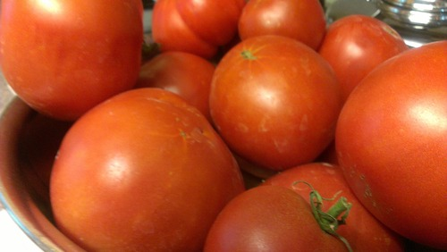 Kathy Stephenson | The Salt Lake Tribune There may be snow outside, but Utahns will still be able to get greenhouse tomatoes and other fresh produce at two winter markets taking place on Saturday, Nov. 17.