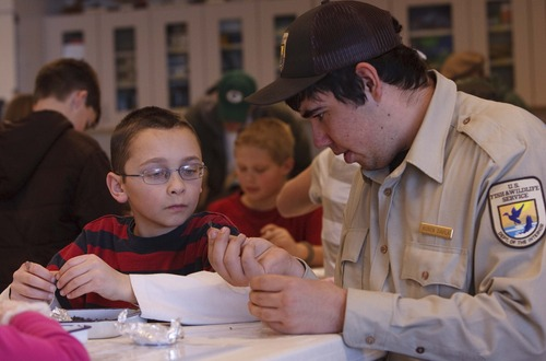 Leah Hogsten  |  The Salt Lake Tribune Bear River Migratory Bird Refuge intern Ruben Davila, right, and Griffin Keller, 10, of Mantua, dissect a pellet while learning about owl diets at the Bear River Migratory Bird Refuge's Owl Day Saturday in Brigham City.
