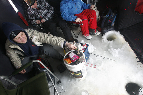 "Scott Sommerdorf   |  The Salt Lake Tribune Chris Nilson, left, of Spanish Fork, fishes inside a heated fishing tent with three other members of the Nilson family while competing in the first leg of the Utah State Parks ""Trifishalon"" ice fishing tournament on Scofield Reservoir, Saturday, December 29, 2012."
