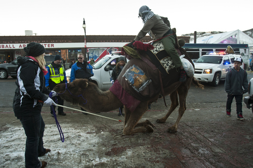 Chris Detrick  |  The Salt Lake Tribune Park City Police give director Next Anyextee a citation for riding the camel 'Moses' along Main Street to promote his film 'Egypt Through The Glass Shop' during the 2013 Sundance Film Festival in Park City on Friday, Jan. 18, 2013.