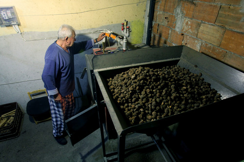 In this picture taken on Dec. 29, 2012, Phillipos Nikolaou converts peach stones into heating heat in the northern village of Petria, about 80 kilometers west Thessaloniki, Greece. A steep increase in heating costs has forced many in crisis-hit Greece to switch from heating oil to wood-burning for warmth. But there's a catch. Illegal loggers are slashing through forests devastated by years of summer wildfires, air pollution from wood smoke is choking the country's main cities and there has been an increase in blazes caused by carelessly attended woodstoves.(AP Photo/Nikolas Giakoumidis)