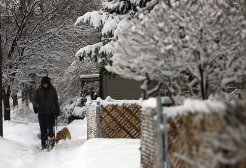 Kim Raff  |  The Salt Lake Tribune Kate Waddison walks (left) Oscar and (right) Mika on 400 East the morning after a winter storm in Salt Lake City on Monday, January 28, 2013.