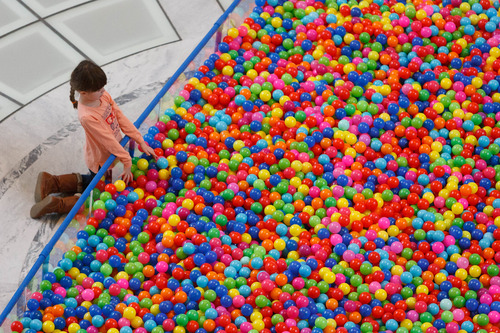 Trent Nelson     The Salt Lake Tribune Haylie Brown looks into a pit of 18,532 plastic balls, one ball for every autistic child in Utah. Advocates for autism insurance reform placed the huge display in the Capitol Rotunda on Friday.