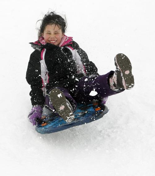 Rick Egan  | The Salt Lake Tribune   Talia Tuttle, 8 sleds down a hill near Mueller Park Junior High in Bountiful, Saturday, February 9, 2013.