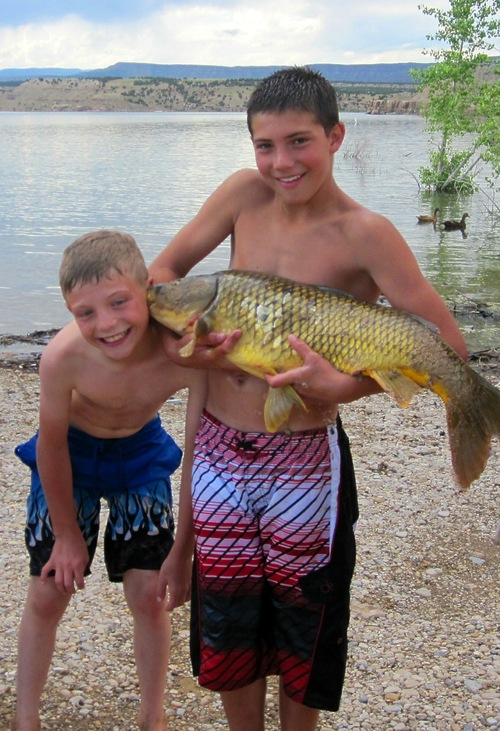 Darion Bird, 11 at the time, LEFT, seen here just days before the July 13, 2011, pool accident playing with a fish with his cousin Dakota Bolton, then 13, RIGHT. Three families are still trying to get reimbursed for the medical bills they owe for a 2011 pool accident in Duchesne.