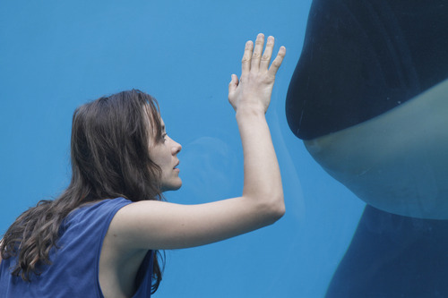 """Marion Cotillard plays a whale trainer who suffers a horrific accident in the drama """"Rust and Bone."""""""