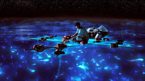 "This publicity photo released by 20th Century Fox shows Suraj Sharma as Pi Patel taking in the bioluminescent wonders of the sea in a scene from the film, ""Life of Pi.""  (AP Photo/20th Century Fox)"