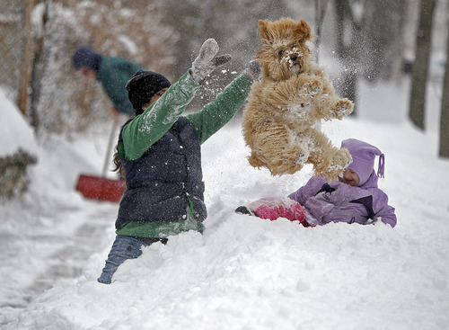Lindsay Knutson, left, plays in the heavy snow with her family dog, Aspen, and daughter Flora Bejblik, 4, cq, as her husband Bob Bejblik, rear left, shovels, Tuesday, March 5, 2013 in southwest Minneapolis. The National Weather Service predicted a two-day snow total of 8 to 12 inches for much of southeastern and east-central Minnesota, including the Twin Cities.  (AP Photo/The Star Tribune, Elizabeth Flores)  MANDATORY CREDIT; ST. PAUL PIONEER PRESS OUT; MAGS OUT; TWIN CITIES TV OUT