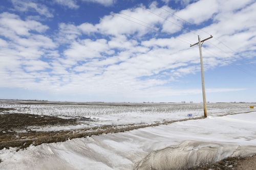 A snow-covered field near Bradshaw, Neb., is seen in this photo taken on March 11, 2013. The proposed Keystone XL pipeline will run through this field, owned by Jenni Harrington. An unusual coalition of environmentalists, property rights advocates and ranchers is attempting to find new ways to derail the Keystone XL pipeline project that, more than ever, seems to be headed for approval. (AP Photo/Nati Harnik)