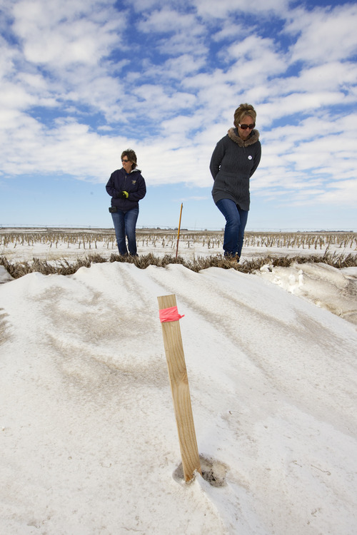 In this photo taken on March 11, 2013, sisters Jenni Harrington, left, and Abbi Kleinschmidt walk past a wooden stick with a pink ribbon that marks the proposed route of the Keystone XL pipeline on Jenni Harrington's property near Bradshaw, Neb. An unusual coalition of environmentalists, property rights advocates and ranchers is attempting to find new ways to derail the Keystone XL pipeline project that, more than ever, seems to be headed for approval in a nation eager for jobs and energy development. (AP Photo/Nati Harnik)