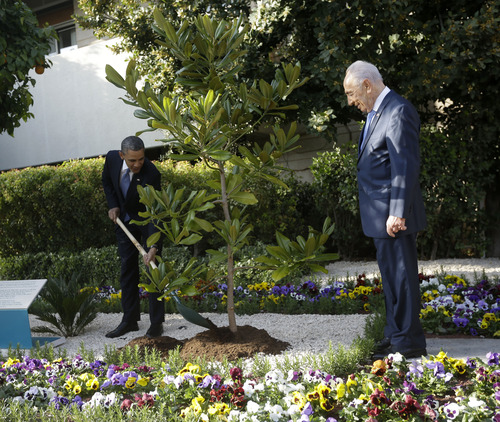 Israeli President Shimon Peres watches at right as President Barack Obama plants a magnolia tree during a planting ceremony at the President's Residence in Jerusalem, Israel, Wednesday, March 20, 2013. Obama help plant a magnolia tree which is a descendant of an original magnolia tree from the White House grounds. (AP Photo/Pablo Martinez Monsivais)