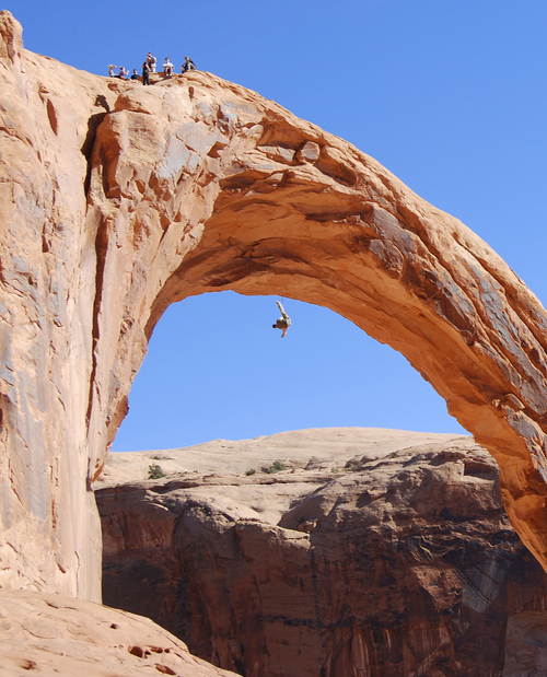 Brian Maffly | The Salt Lake Tribune  Corona Arch near Moab has become what is billed as the world's largest rope swing after climbers figured out how to adapt climbing gear to set up a thrilling 250-foot pendulum ride under the arch. Concerned with liability issues, state officials recently shut down the arch, which is on state-owned land, for commercially guided swinging, pictured here on Nov. 4. A Utah man died in a swinging accident from the arch this weekend during a private outing.