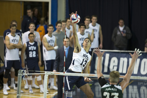 Courtesy photo BYU men's volleyball player Ben Patch is only a freshman, but is already a key cog for the No. 1-ranked Cougars.