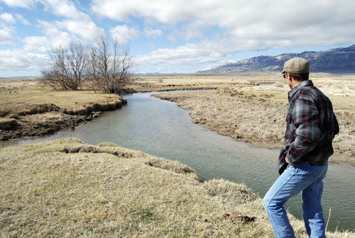 "Brian Maffly | The Salt Lake Tribune  Dave Baker, a third-generation Snake Valley rancher, looks at the Stateline Spring which is a critical source of water for farmers and ranchers near the towns of Baker, Nev., and Utah's Garrison and EskDale. Local ranchers fear Las Vegas' proposed groundwater pumping scheme could turn the region into a ""dust bowl,"" but they are divided on whether Utah Gov. Gary Herbert should sign an agreement with Nevada to divide the valley's water equally between the two states."