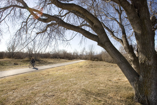 Paul Fraughton  |  Tribune file photo Respondents to a Salt Lake County survey supported parks and recreation development that advances activities such as this cyclist pedaling along the Jordan River Parkway trail near 3300 South.