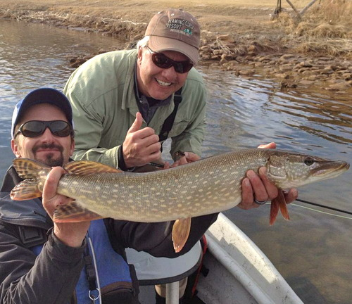 Kevin Clegg of Flaming Gorge Resort, holding the fish, with a northern pike landed by his client while fishing the Green River below Flaming Gorge Dam. A new regulation requires anglers to kill all northern pike, walleye and smallmouth bass landed on the Green River.  Courtesy photo