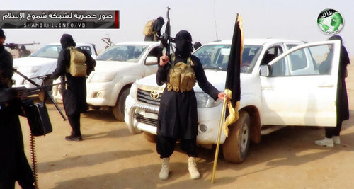 This undated image posted on a militant website purports to show militants in the al-Jazeera region on the Iraqi side of the Syria-Iraq border. Last month, militants inside Iraq killed 48 Syrian government troops who had sought refuge from the war in their country _ an ambush that regional officials now say is evidence of a growing cross-border alliance between two powerful Sunni jihadi groups _ Al-Qaida in Iraq and the Nusra Front in Syria. Two Iraqi intelligence officials said the jihadi groups are sharing three military training compounds, logistics, intelligence and weapons as they grow in strength around the Syria-Iraq border, particularly in a sprawling region called al-Jazeera, which they are trying to turn into a border sanctuary they can both exploit.(AP Photo)