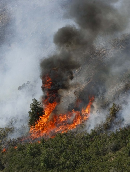 Leah Hogsten  |  The Salt Lake Tribune A wildfire burns in Alpine last July. State and federal officials are preparing for another busy fire season in 2013.