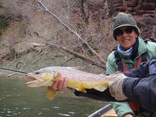 Green river fishing report big 39 bows and browns mixed in for Green river lake fishing report