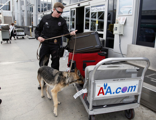 Security checks passengers bags at the American airlines terminal at Los Angeles International Airport on Tuesday, April 16, 2013. Computer problems forced American Airlines to ground flights across the country Tuesday after the airline was unable to check passengers in and book passengers. (AP Photo/Nick Ut)