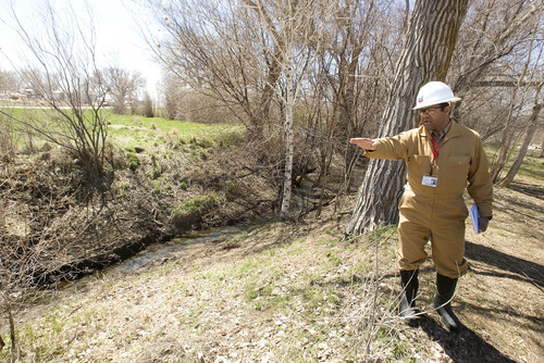 Paul Fraughton  |  The Salt Lake Tribune Patrick Green, incident commander for the Chevron pipeline spill at Willard Bay State Park, points out a small stream that was affected by the March 18 diesel fuel spill.  Wednesday, April 10, 2013