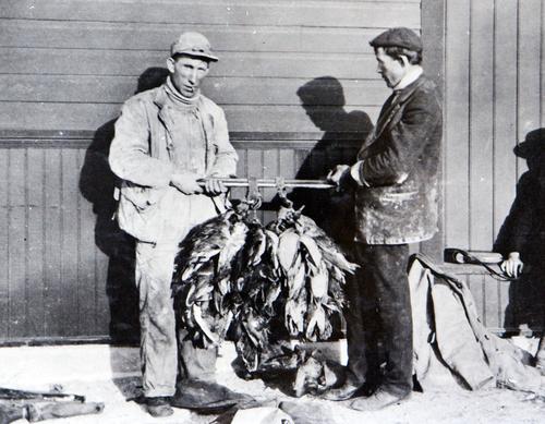 (Utah State Historical Society)  Market duck hunters.