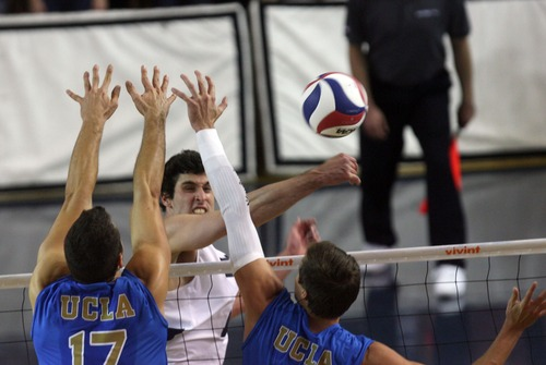 Kim Raff  |  The Salt Lake Tribune (middle) BYU player Josue Rivera spikes the ball over the hands of UCLA players (left) Spencer Rowe  and (right) Dane Worley during the semifinals of the MPSF Volleyball Tournament at the Smith Fieldhouse in Prove on April 25, 2013.  BYU went on to win the match 3-2 after trailing UCLA by two sets.