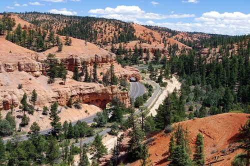 Photo courtesy of Dixie National Forest Scenic Byway 12 and a multiuse trail run through Red Canyon in southern Utah.