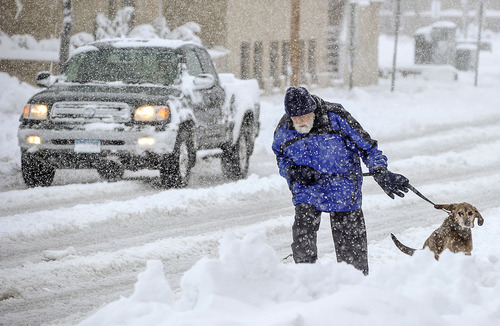 Mike Gregg trudges through the snow Thursday morning in Austin, Minn., to walk his dog Jake. Heavy, wet snow impacted driving and all-around travel abruptly interrupting spring. (Associated Press/Austin Daily Herald, Eric Johnson)