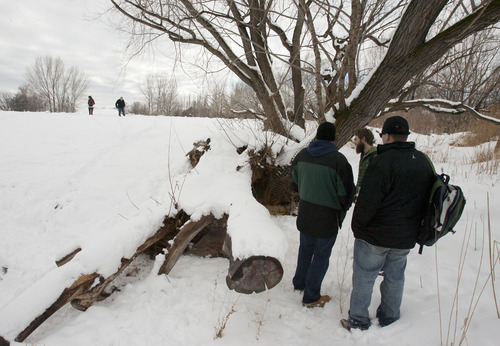 Steve Griffin | The Salt Lake Tribune   Tim Keffer, Buddy Tymczyszyn, and Josh Holdaway check out a sleeping area carved out from under a tree trunk along the Jordan River near 600 north during the point-in-time homeless people count in Salt Lake City, Utah Thursday January 31, 2013. Each year during the count homeless people, in Utah, are asked where they spent the night of January 30. The survey is conducted mainly between 4 a.m. and 7 a.m. by teams of volunteers who go to shelters and areas where they know there are homeless people camping out. The results of the count and survey help address the needs of the homeless population in Utah.