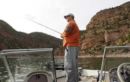 Al Hartmann     The Salt Lake Tribune  Ryan Kelly of Dutch John casts for trout on April 25, 2012, while boating on Flaming Gorge Reservoir. Kelly landed 70 or so rainbow trout in three hours on this trip.