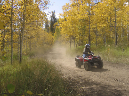 In this undated file photo, a rider navigates an ATV through the woods. Courtesy Utah State Parks