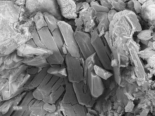 Courtesy of University of Utah This scanning electron microscope image shows crystals of the mineral nashite -- named in honor of University of Utah geologist Barbara Nash -- from the old Little Eva uranium mine near Moab, Utah.