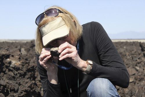 Courtesy of University of Utah University of Utah geology Professor Barbara Nash examines a rock at the Ice Springs basalt flow, an old lava flow, west of Fillmore, Utah. Nash has been recognized by her colleagues, who named a newly discovered vanadium mineral nashite in her honor.