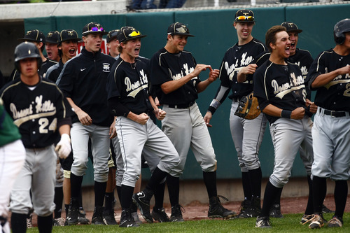 Chris Detrick  |  The Salt Lake Tribune Desert Hills' Ty Rutledge's (31) teammates celebrate after he scored a run during the game at Brent Brown Ballpark at Utah Valley University Friday May 17, 2013. Desert Hills defeated Snow Canyon 5-4.