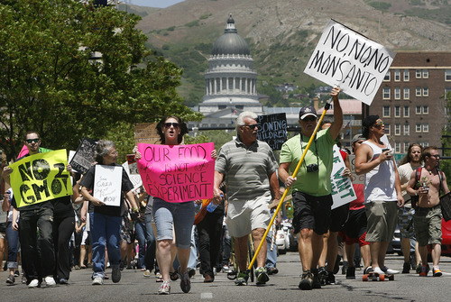 Scott Sommerdorf   |  The Salt Lake Tribune Demonstrators protesting genetically modified foods and Monsanto Company's business practices march from the Utah State Capitol into downtown Salt Lake City on Saturday.