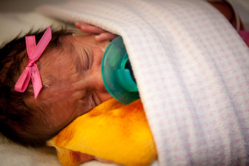 Courtesy | University of Utah Hospital One of five pre-term babies delivered on Sunday at University of Utah Hospital to Guillermina and Fernando Garcia of Salt Lake City. They are the first quintuplets born in Utah in at least five years.