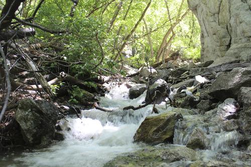 Courtesy image Ferguson Canyon
