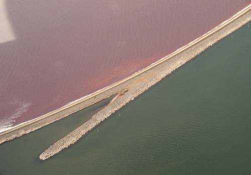 Francisco Kjolseth  |  Tribune file photo  A plan to add a bridge to a section of the railroad causeway over the northern portion of the Great Salt Lake is at the center of concerns over potential impacts to the lake's stakeholders.