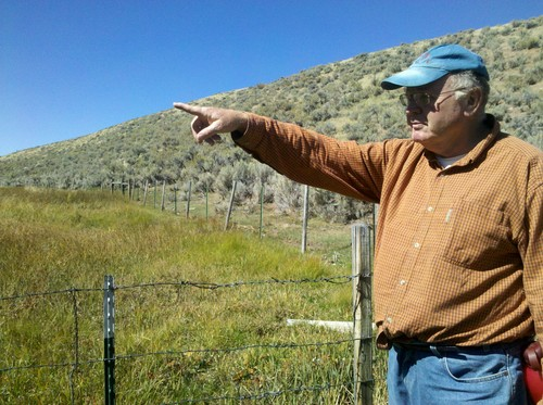 Brandon Loomis | Tribune file photo Jim Catlin of the Wild Utah Project points out differences between grazed grass and a wet meadow protected by a fence in late September 2011, after a season's grazing at the Duck Creek allotment in Rich County. Wild Utah Project is one of two organizations trying to force changes to protect range health and sage grouse habitat.