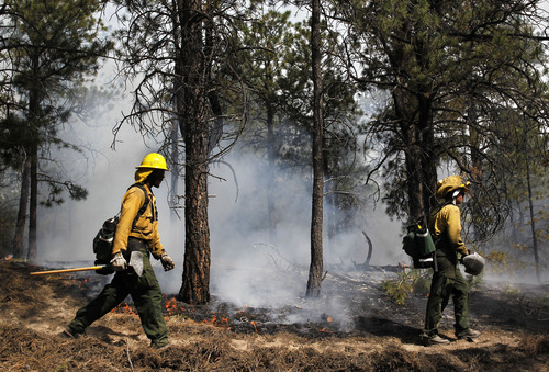 AmeriCorps volunteer firefighters assigned to the El Paso County Sheriff's Office, Woodland Fire Crew, help contain a spot fire in an evacuated area of forest, ranches and residences, in the Black Forest wildfire area, north of Colorado Springs, Colo., on Thursday, June 13, 2013.  The blaze in the Black Forest area northeast of Colorado Springs is now the most destructive in Colorado history, surpassing last year's Waldo Canyon fire, which burned 347 homes, killed two people and led to $353 million in insurance claims. (AP Photo/Brennan Linsley)