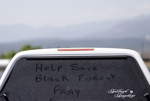 """A note written on a vehicle's dusty window reads, """"Help Save Black Forest. Pray"""" at a Red Cross shelter for evacuees of the Black Forest Fire at Palmer Ridge High School in Monument, Colo. on Saturday, June 15, 2013. (AP Photo/Marcio Jose Sanchez)"""
