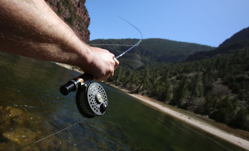 Francisco Kjolseth  |  The Salt Lake Tribune Tribune outdoor writer Brett Prettyman casts a line into the Green River along the scenic A section, from Flaming Gorge Dam to Little Hole, following a lunch break along its steep shores.