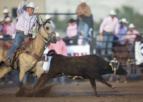 Lennie Mahler  |  The Salt Lake Tribune Cate Roberts scores a 7.99 with partner Cooper Larson to win the team roping event in the Utah High School Rodeo Championships in Heber City last week.