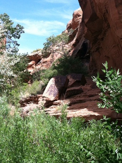 Photo by Lindsay Whitehurst Mill Creek hike in Moab, which boasts a swimming hole, small waterfall and some petroglyphs.