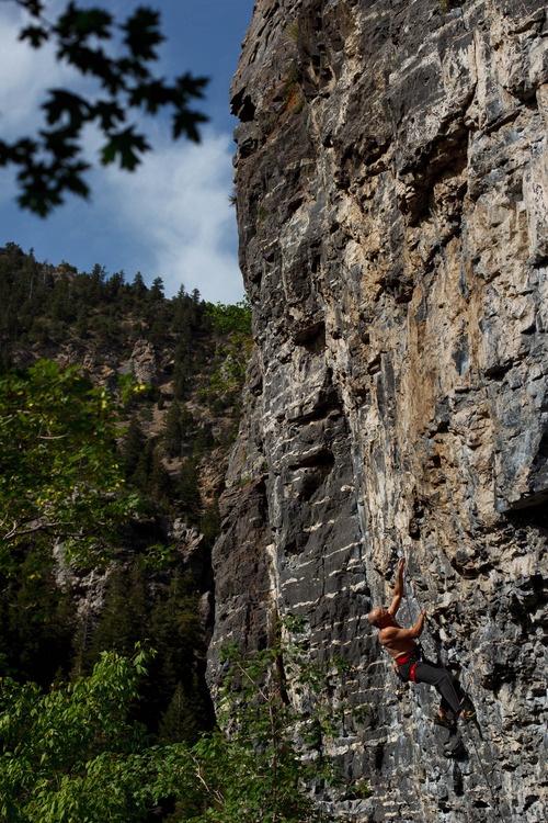 Trent Nelson  |  The Salt Lake Tribune Gordon Douglass climbs the Division Wall, Wednesday June 19, 2013 in American Fork Canyon.