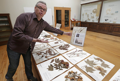 In this June 12, 2013 photo, Matt von Konrat, curator of the botanical collection at Chicago's Field Museum of Natural History, shows examples of the museum's plant collection that includes about 3 million specimens from around the world, including some collected in the 1770s by Captain Cook. The museum, one of the world's pre-eminent research centers, is facing budget problems that is forcing it to cut research staff. Field President Richard Lariviere says the museum is poised to recover financially within two years. But some scientists say the cuts in its research operations will be significant. (AP Photo/M. Spencer Green)