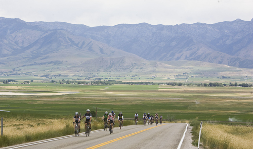 Keith Johnson | The Salt Lake Tribune  Cyclists endure a long, steep stretch of road outside Lewiston, Utah during the MS 150 bike ride in Cache Valley, Utah June 29, 2013.