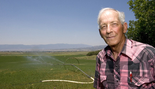 Paul Fraughton  |  The Salt Lake Tribune Mt. Pleasant farmer Ken Palmer, a member of the Sanpete Water Conservancy District, looks out over his fields of alfalfa. Wednesday, July 10, 2013